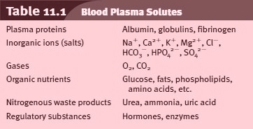 Blood Plasma Solutes