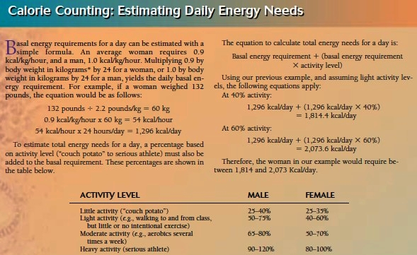Estimating Daily Energy Needs