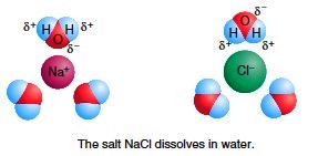 The salt NaCl dissolves in water