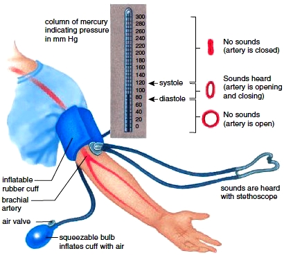 Use of a sphygmomanometer